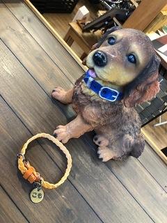 犬用 首輪